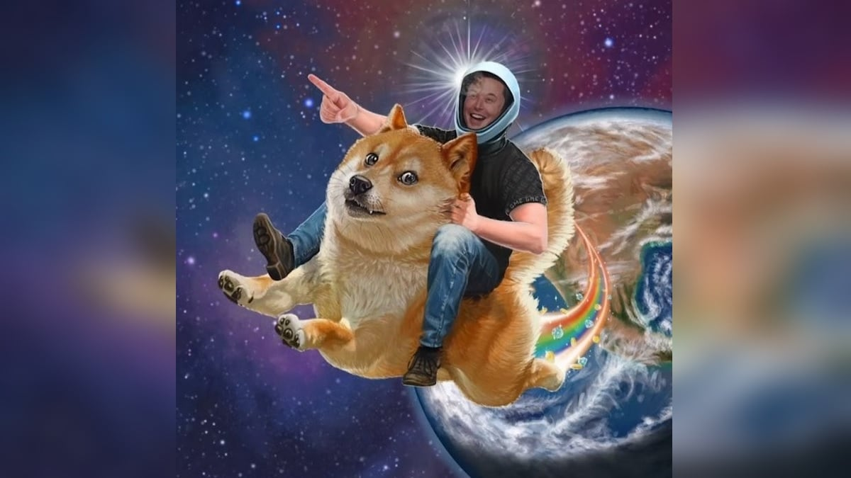 Dogecoin क्रिप्टोकरेंसी की कीमत में 1 हफ्ते में 400 पर्सेंट का उछाल, जानें मौजूदा कीमत
