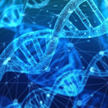 How Can Genetic Data Be Used in Biodiversity Research?