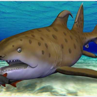 300-Million-Year-Old Godzilla Shark Has a New, Official Name