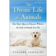 Image result for the divine life of animals