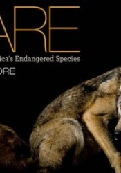 Rare: Portraits of America's Endangered Species Book by Joel Sartore