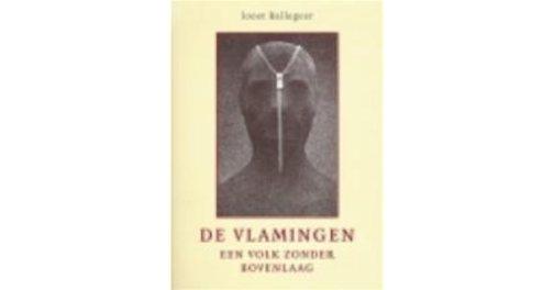 De Vlamingen: een volk zonder bovenlaag by Joost Ballegeer