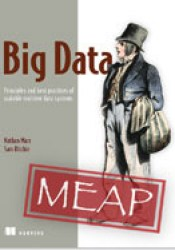 Big Data: Principles and best practices of scalable realtime data systems Book by Nathan Marz