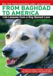 From Baghdad to America: Life Lessons from a Dog Named Lava Book by Jay Kopelman