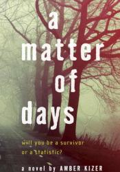 A Matter of Days Book by Amber Kizer