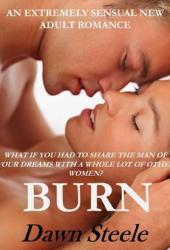 Burn 1 Book by Dawn Steele