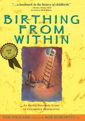 Birthing from Within: An Extra-Ordinary Guide to Childbirth Preparation Book by Pam England
