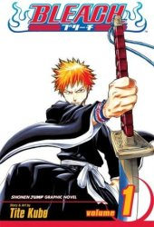 Bleach, Volume 01 Book