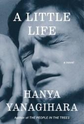 A Little Life Book
