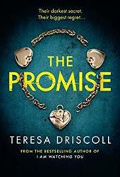 The Promise Book by Teresa Driscoll