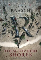 These Divided Shores (Stream Raiders, #2) Book