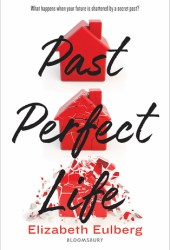 Past Perfect Life Book