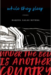while they sleep (under the bed is another country) Book