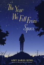 The Year We Fell From Space Book
