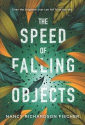 The Speed of Falling Objects Book
