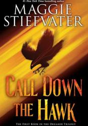 Call Down the Hawk (Dreamer, #1) Book by Maggie Stiefvater