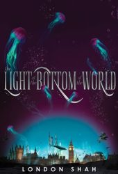 The Light at the Bottom of the World (Light the Abyss, #1) Book