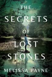 The Secrets of Lost Stones Book
