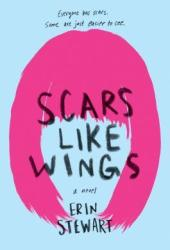 Scars Like Wings Book