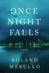 Once Night Falls Book