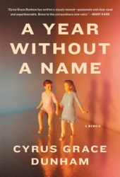 A Year Without a Name: A Memoir Book