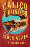 Calico Thunder Rides Again