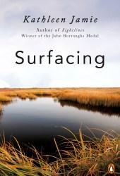 Surfacing Book