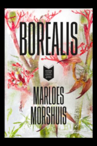 Borealis – Marloes Morshuis