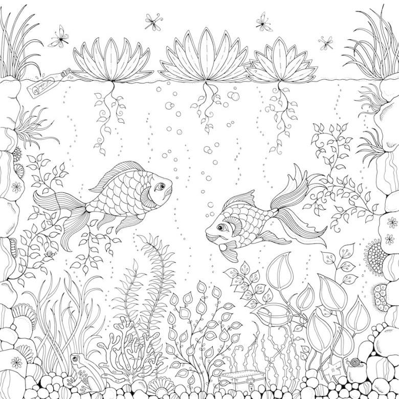 103 Secret Garden Coloring Book Pdf Free Download Free