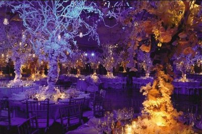 24 Weddings That Really Brought The Wow Factor With ...