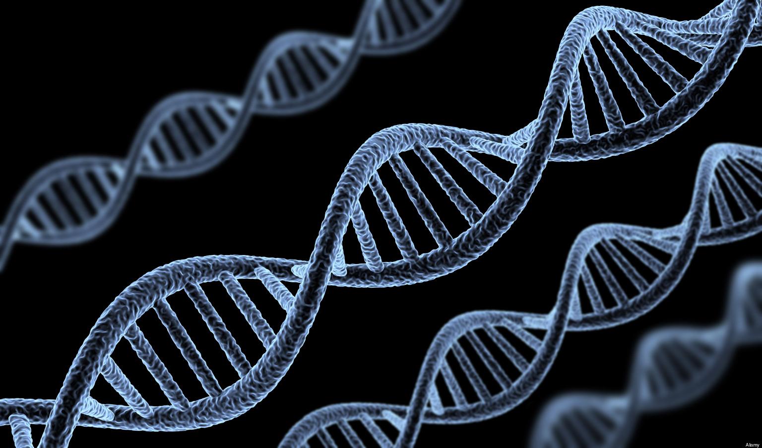 genes के लिए चित्र परिणाम