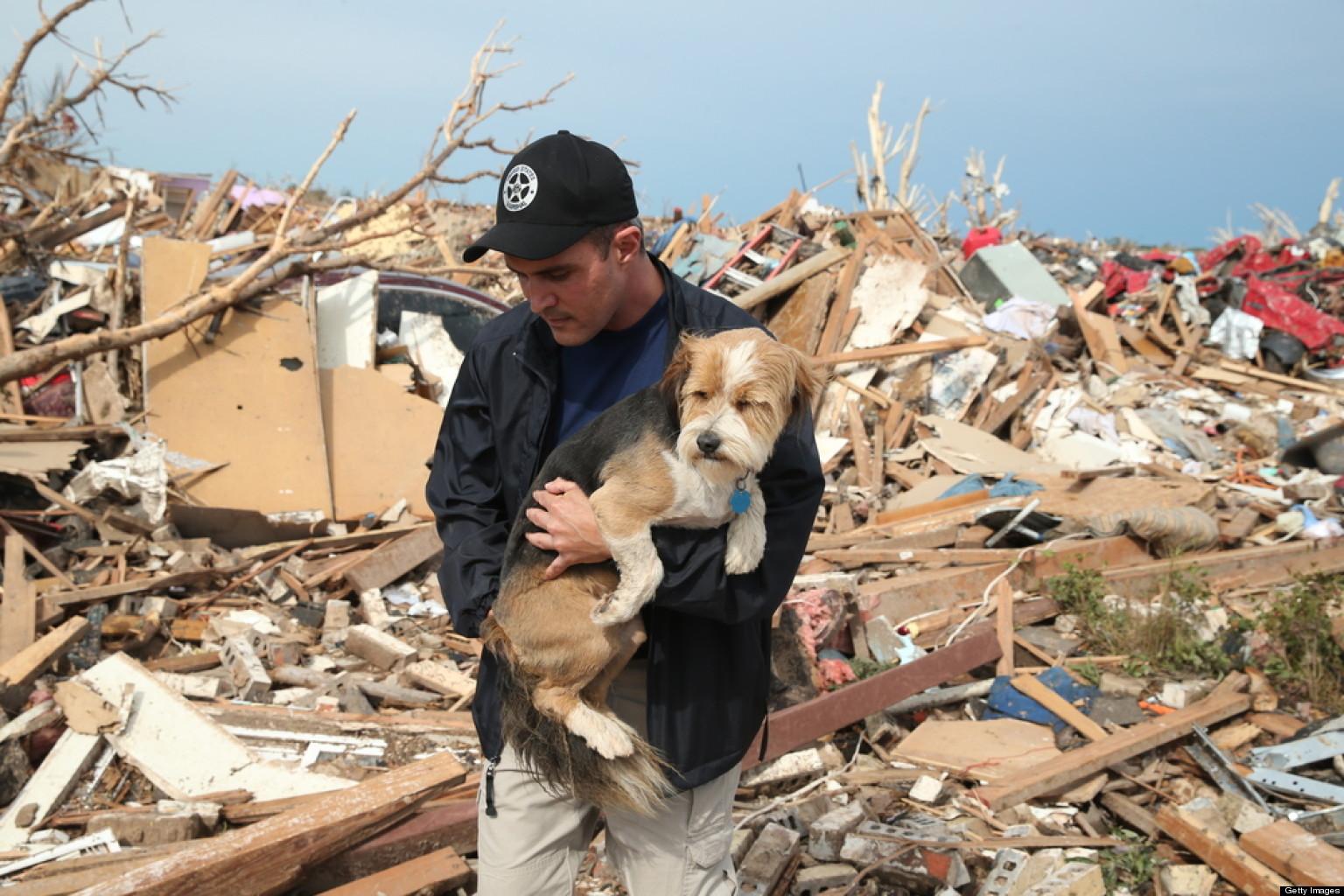 Help Oklahoma Tornado Animal Survivors With These
