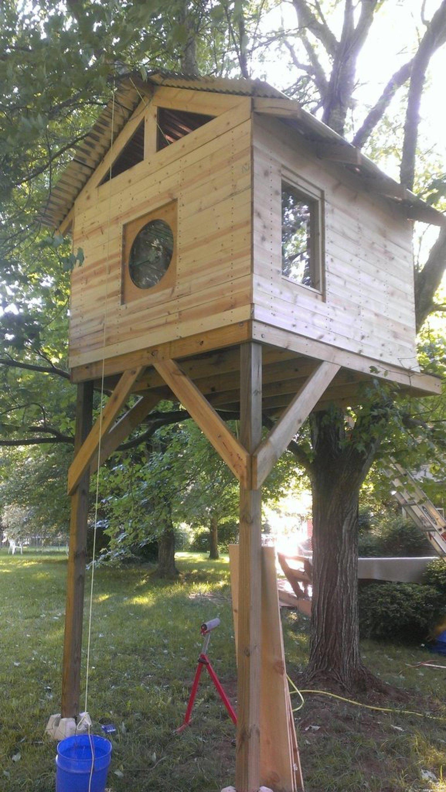 PHOTOS Il Se Fabrique Une Maison Dans Un Arbre Pour Moins