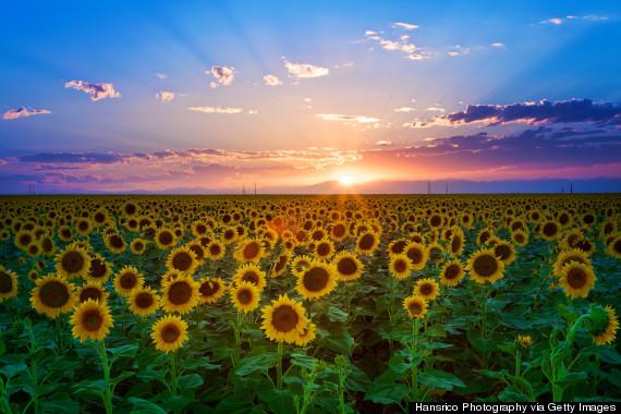 sunset denver