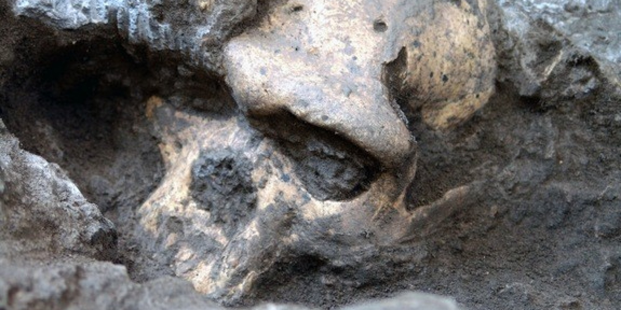 Early Humans Migrated From Africa Far Earlier Than