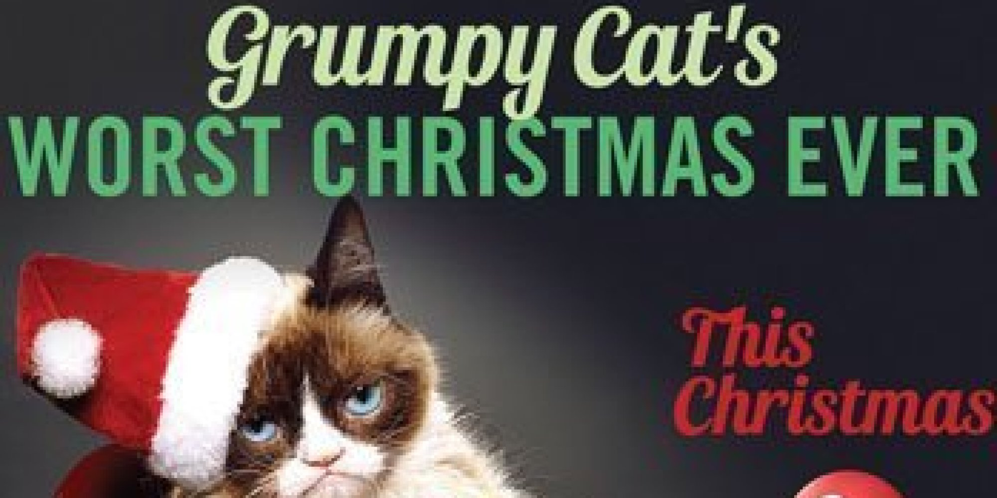 A Grumpy Cat Lifetime Movie Is Really Happening HuffPost