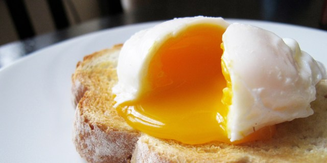 Image result for poached eggs
