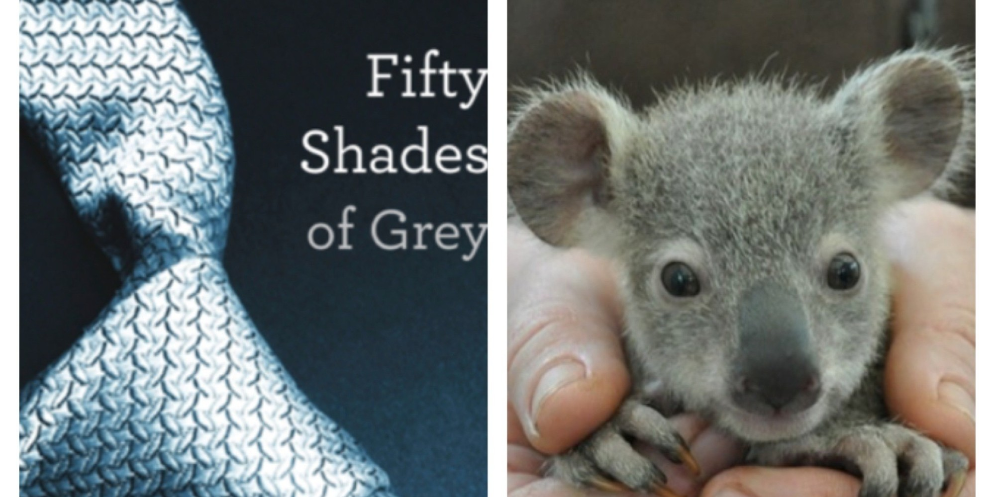 Fifty Shades Of Grey Adorable Animals The Version You