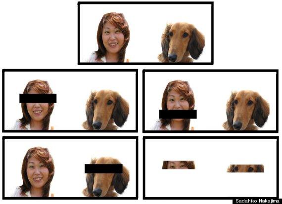 fotos del dueño del perro