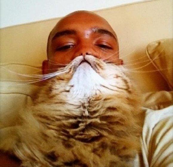 The Cat Moustache Man Achieves Perfect Facial Hair VIDEO