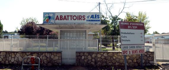 ABATTOIR ALES