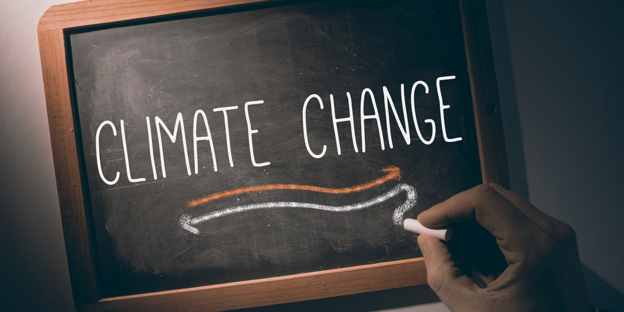 Climate Change And The Migration Of Infectious Disease