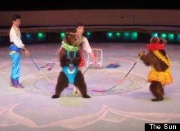 Nk Circus