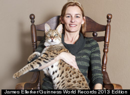 Biggest House Cat In The World Guinness Images Pictures Becuo