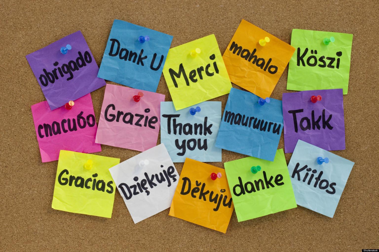 Bildergebnis für Gratitude
