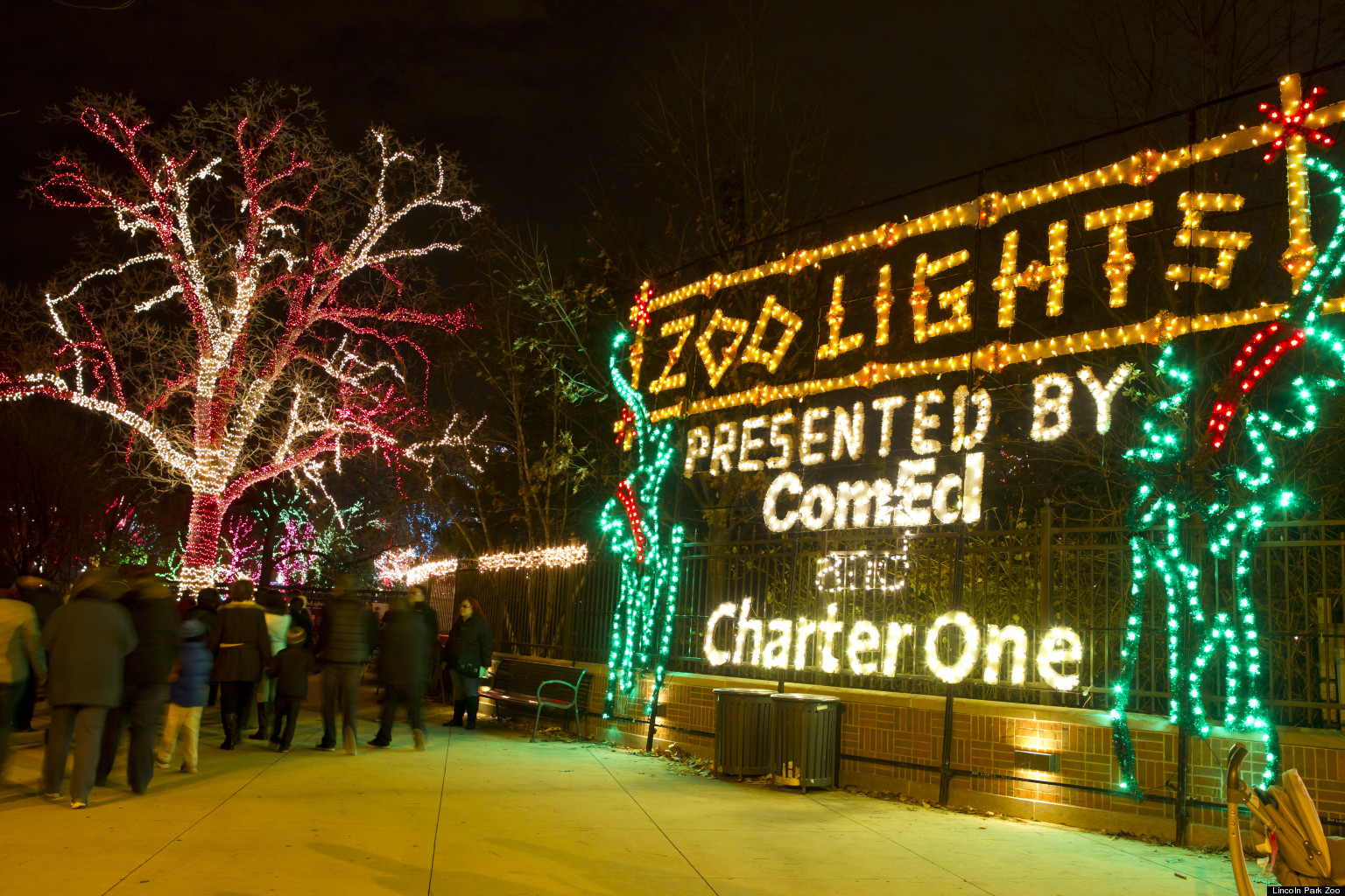 Zoo Lights Chicago Lincoln Park