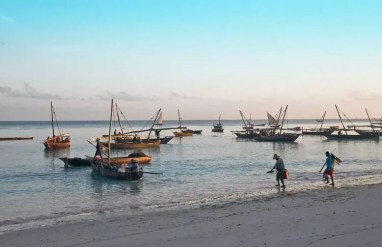 Zanzibar secures $3 bln from Turkish firm to boost fishing