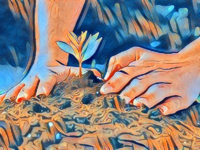 Agroecología como instrumento de cambio