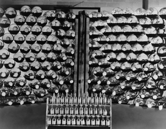 Cómo se produjo penicilina de forma masiva en plena Guerra Mundial