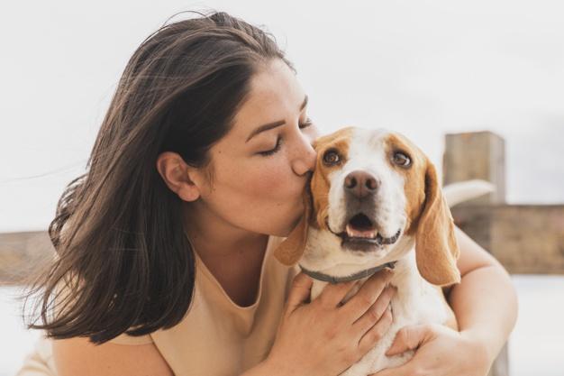 dog Give A Kiss, dog training, dog tricks, teach your dog tricks, train dogs